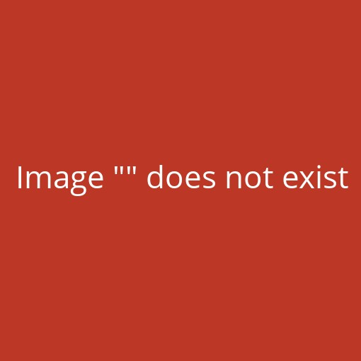 SOUDAL Silirub + S8800PP Anthrazit 310ml